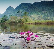 vietnam_chuaHuong.jpg