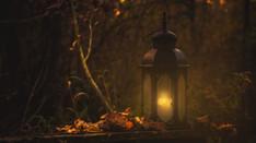 John C Adams Reviews 'The Wise Man's Fear'