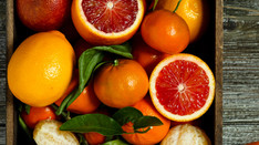 John C Adams Reviews 'Oranges Are Not The Only Fruit'