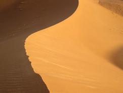 John C Adams Reviews 'Empire of Sand'