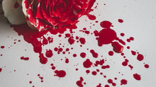John C Adams Reviews 'Tyrant's Blood'