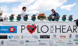 Polo for Heart, 50 Awards