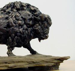 """Bison"", Bronze"