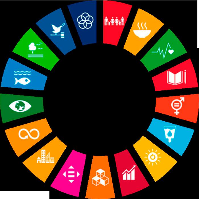 UN Sustainable Development Goals or SDGs