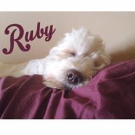 Ruby_0002.jpg