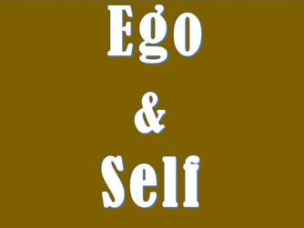 Observing A Fragile Ego