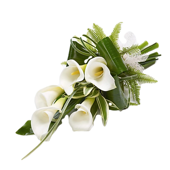 Aurum lillies_edited_edited.png