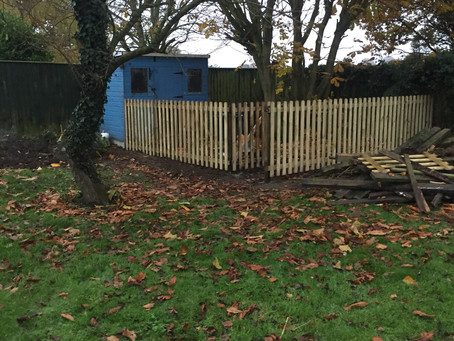 Four foot picket fence installed in Kersey, Suffolk.