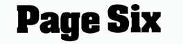 page6 logo.png