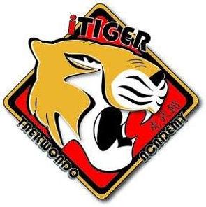 itiger logo.jpg