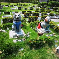 Pet Memorial Garden 宠物墓园