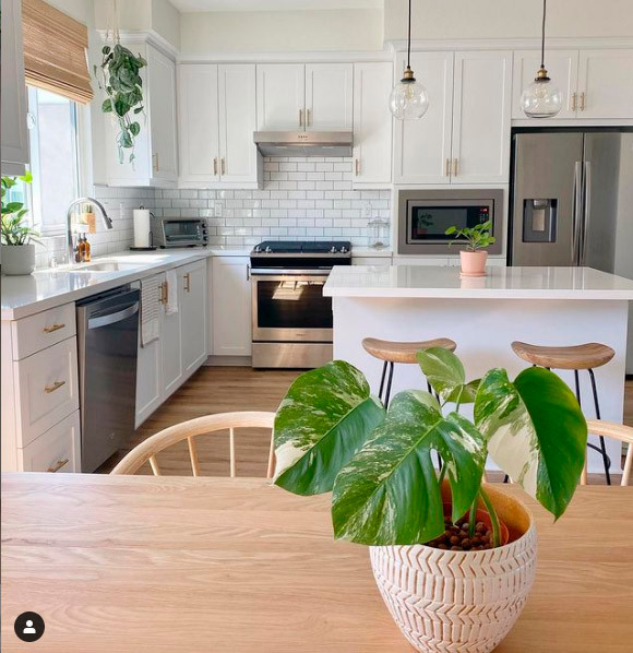 decorate a minimalist kitchen with plants