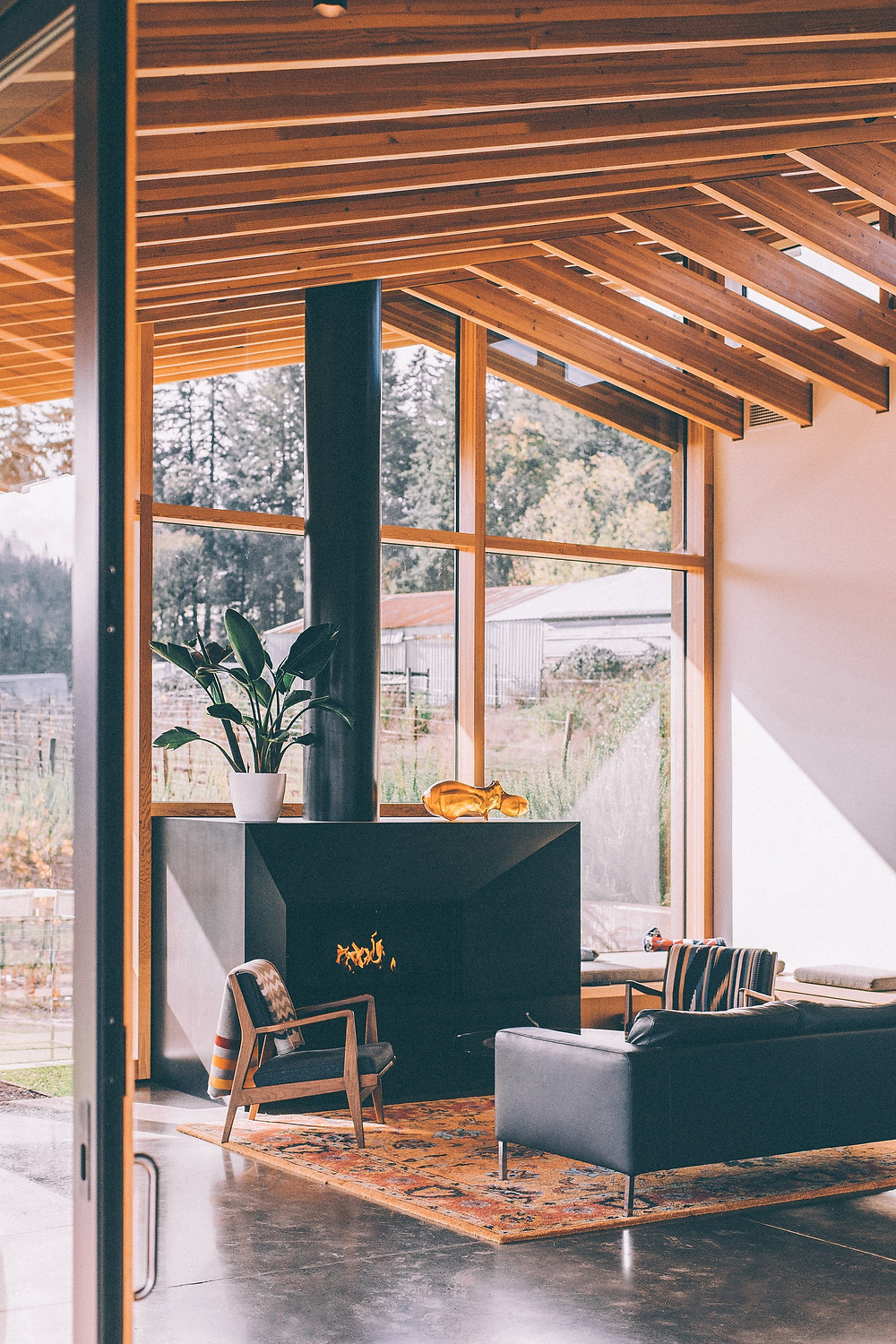 minimalist scandi wooden cabin with glass windows and black sofa and chimney