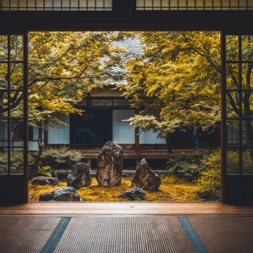 japanese house with a garden
