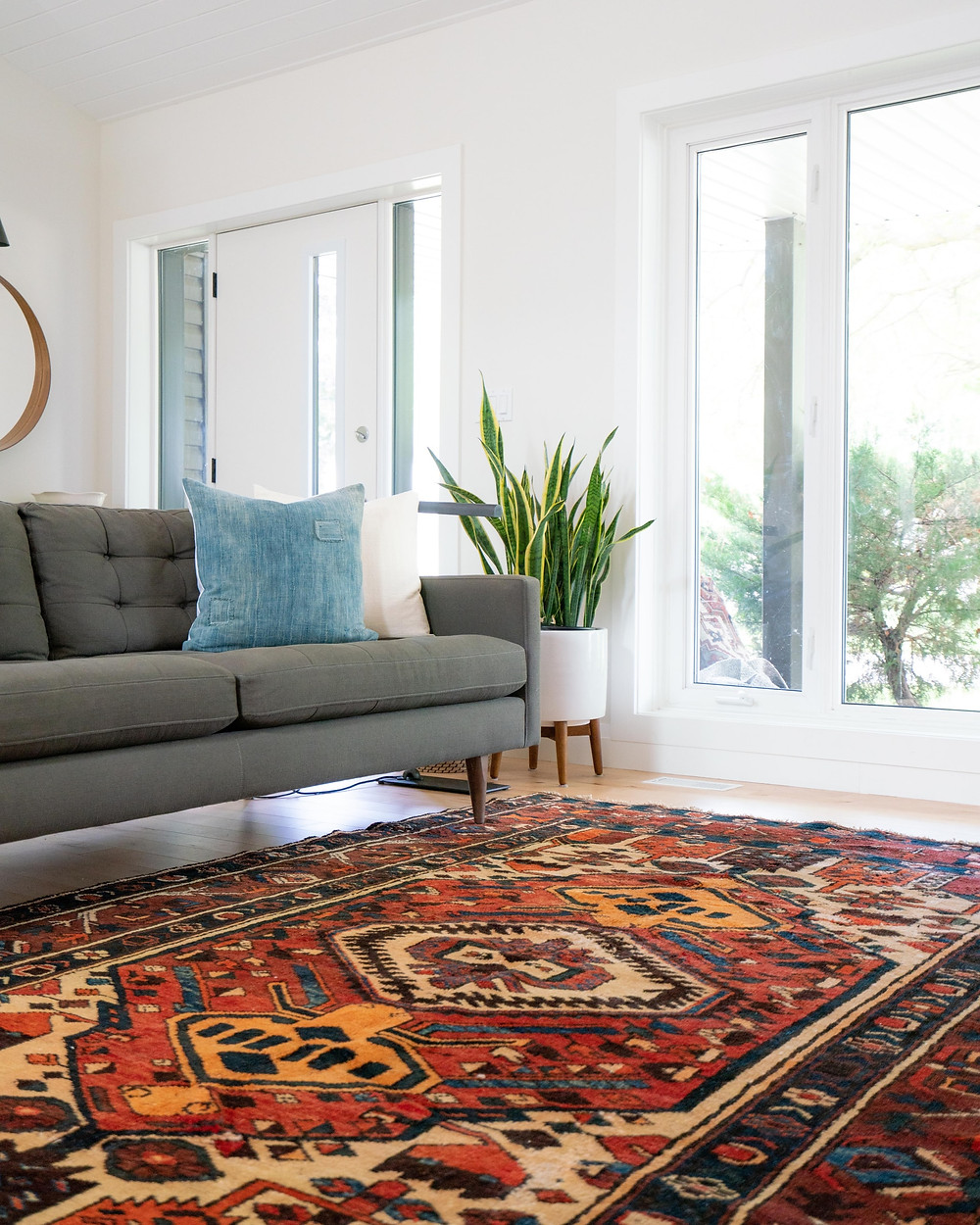 minimalist and vernacular white living room with plants and traditional area rug