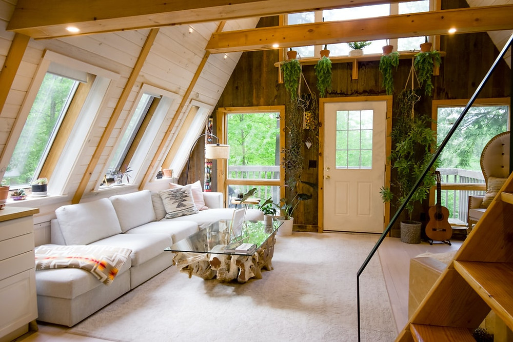 minimalist cozy cabin living room with natural wood and plants