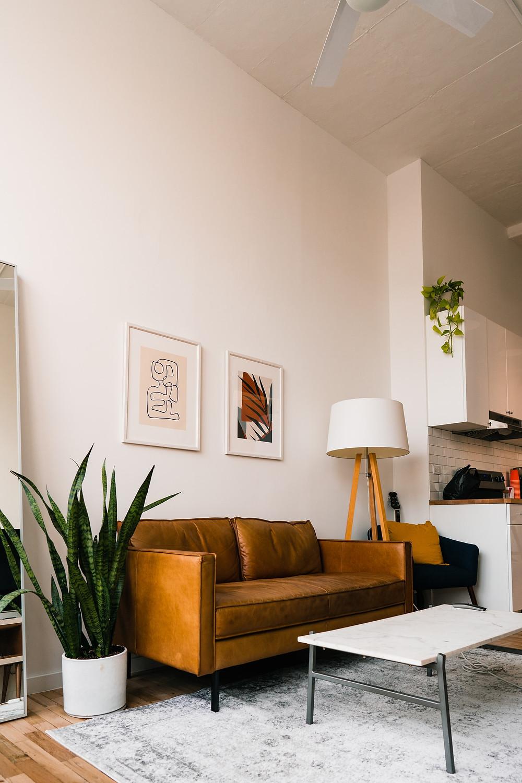 minimalist masculine bachelor apartment living room
