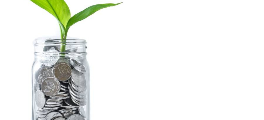 6 minimalist tips to manage your money