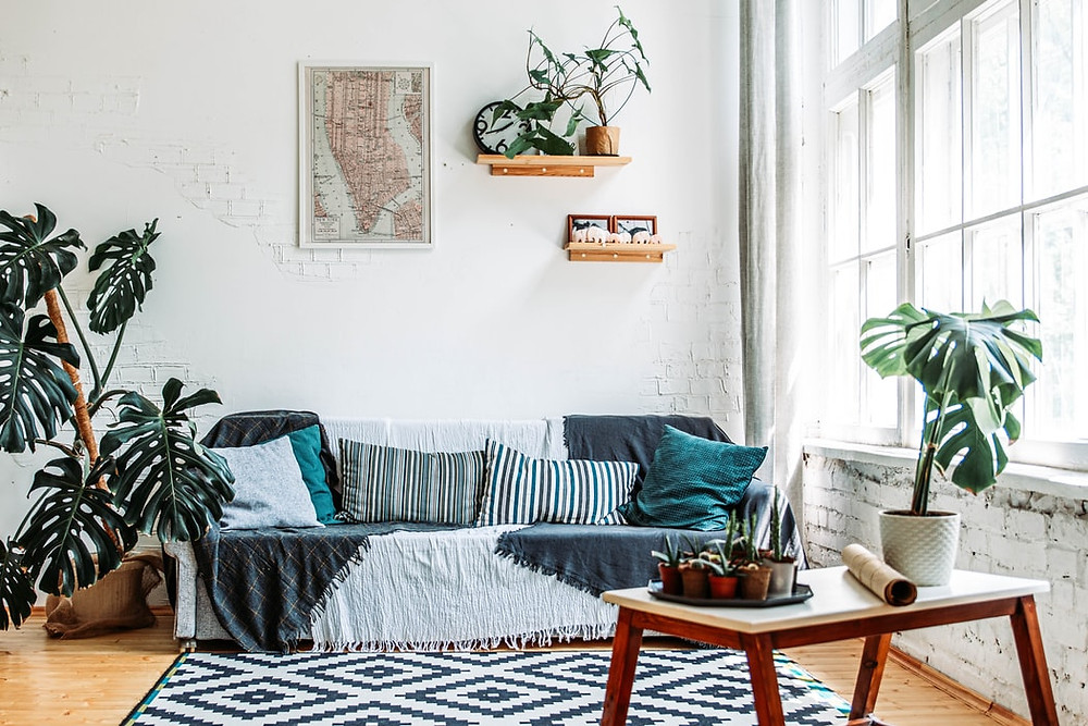 minimalist rustic white living room with plants