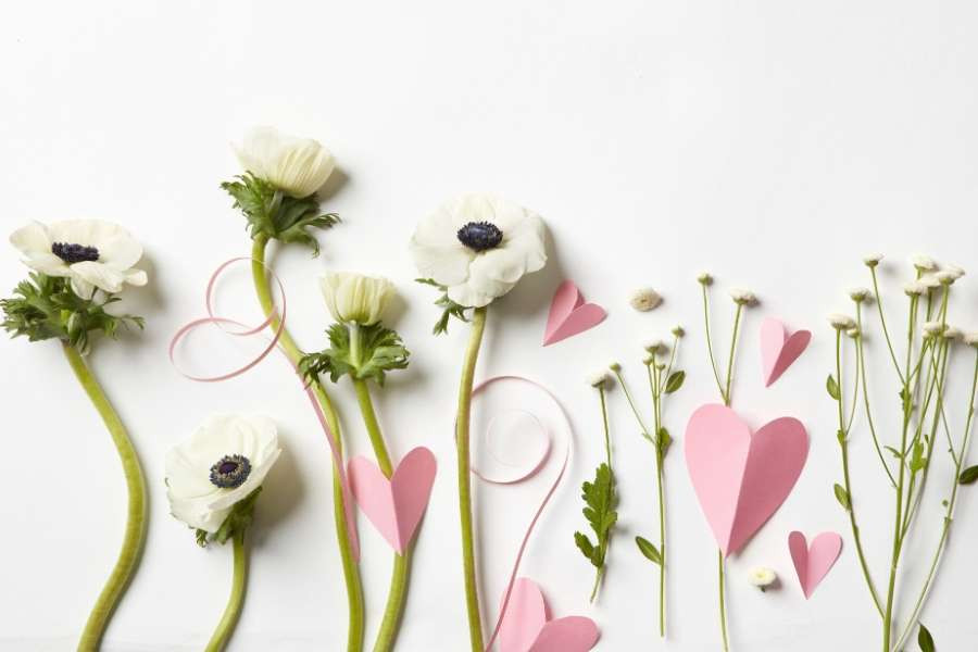 minimalist flowers and paper hearts
