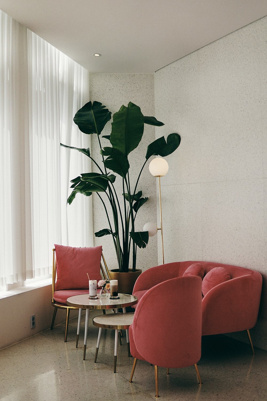 minimalist small apartment hot pink lving room