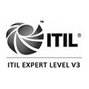 ITILv3 Expert Zertifizierung