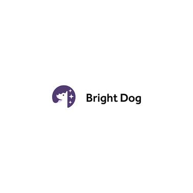 Bright Dog