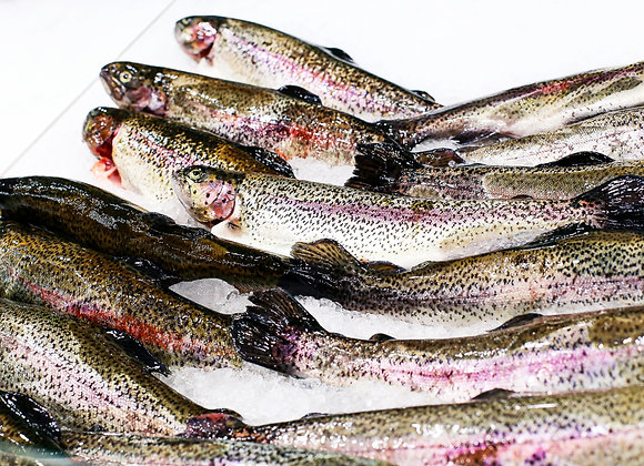 Rainbow Trout (400grams)