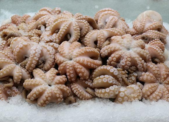 Octopus Medium (1kg)