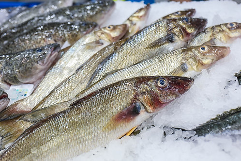 Sand Whiting (1kg)