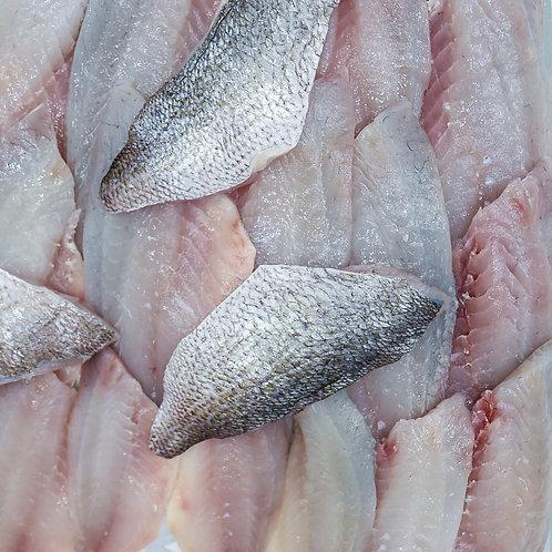NZ Snapper Fillets - Skin On (500 gr)