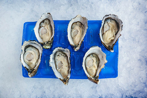 Pacific Oysters Jumbo (1/2 dz)