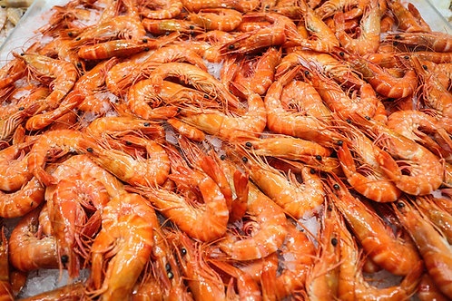 Cooked Tiger Prawns XL (500g)