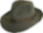 masked fedora low res real.png