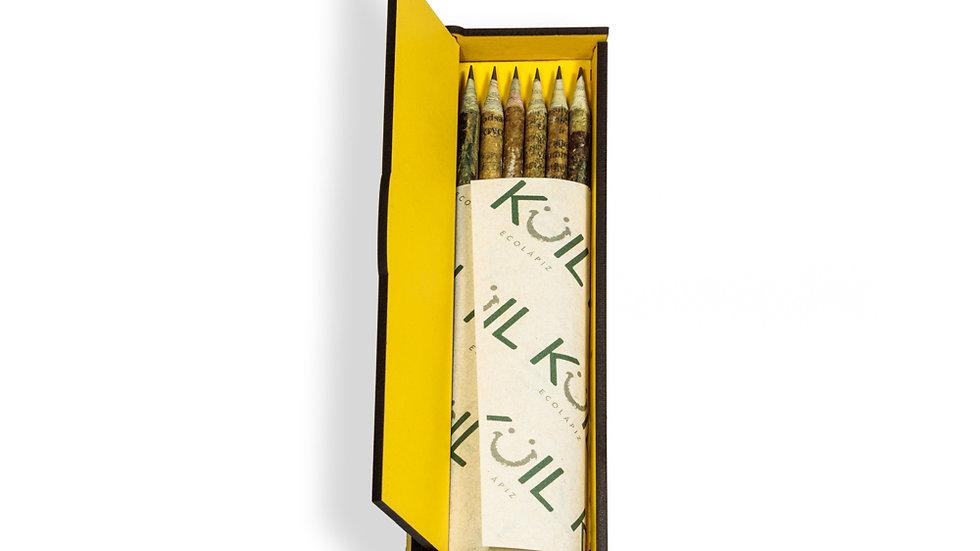 Caja de 6 lápices aromáticos