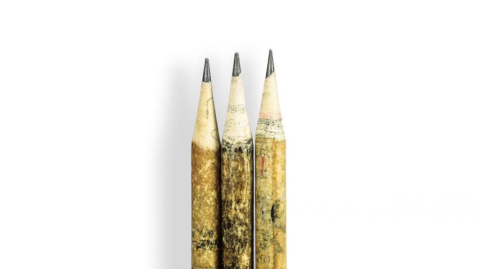 Set de 3 lápices con cápsula con semillas