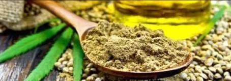 Uso medicinal del Cannabis: un desafío para el siglo XXI