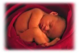 Defensa de los Niños por Nacer desde la Bioética de los Derechos Humanos. Despenalizacion del Aborto