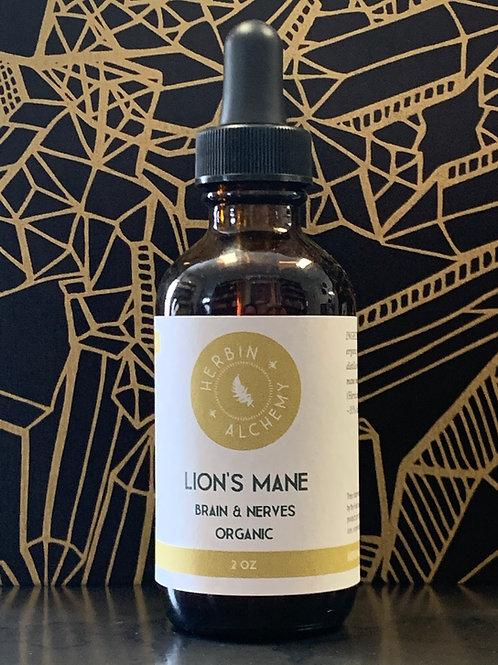 Lion's Mane Tincture