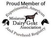 logo-member-of (1).jpg