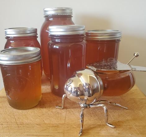 Local Raw Honey Longmont CO