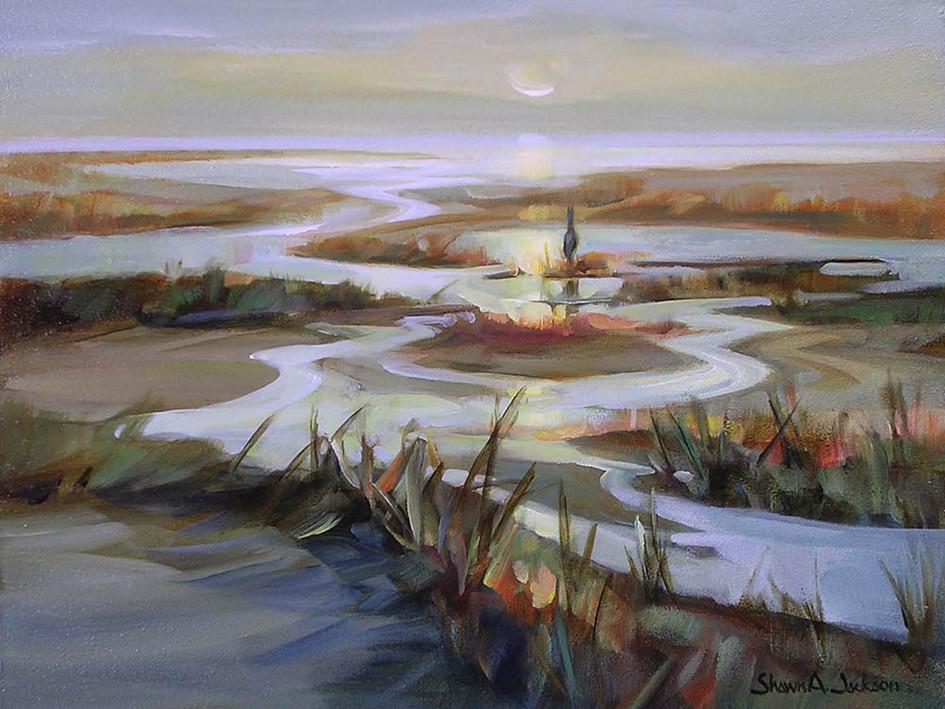 Tidewater Reflections, Terra Nova