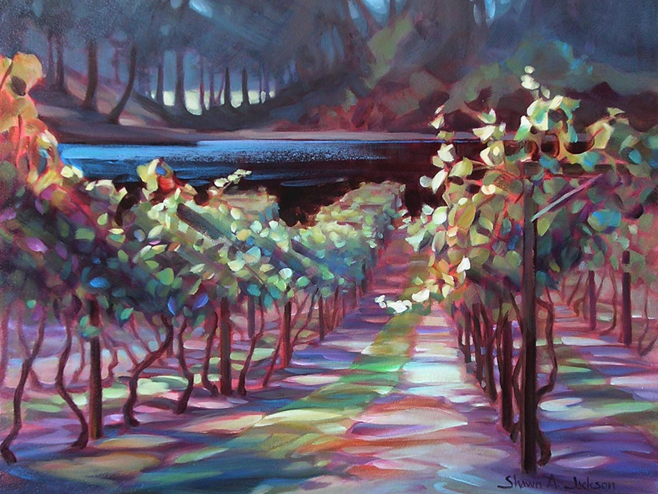 Afternoon Light, Vineyard