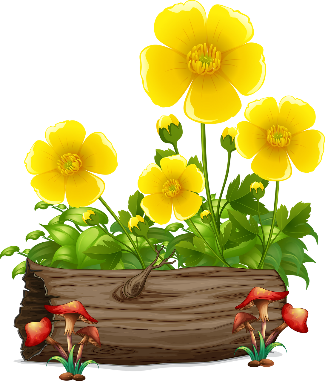 yellow flower 1.png