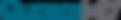 QuasarMD-Logo_TM_2019_400x66.png