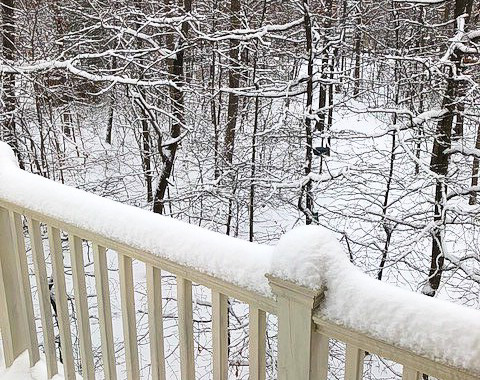 Deck Snow 1.jpg