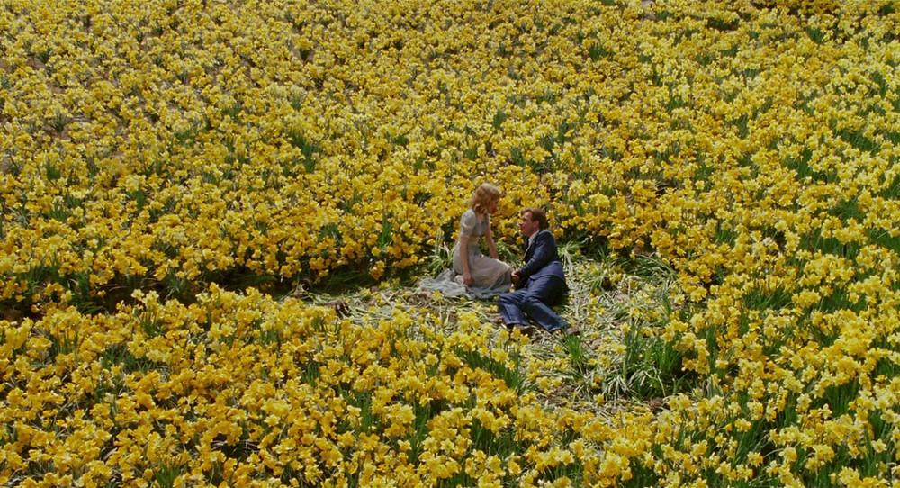 Dois personagens no centro de um campo de lírios amarelos se olhando.