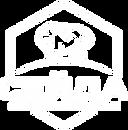 Seyda logo 3.png