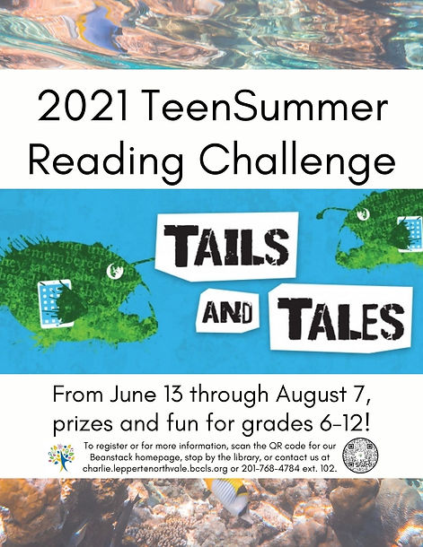 Summer Reading Promotional Packet - Kids