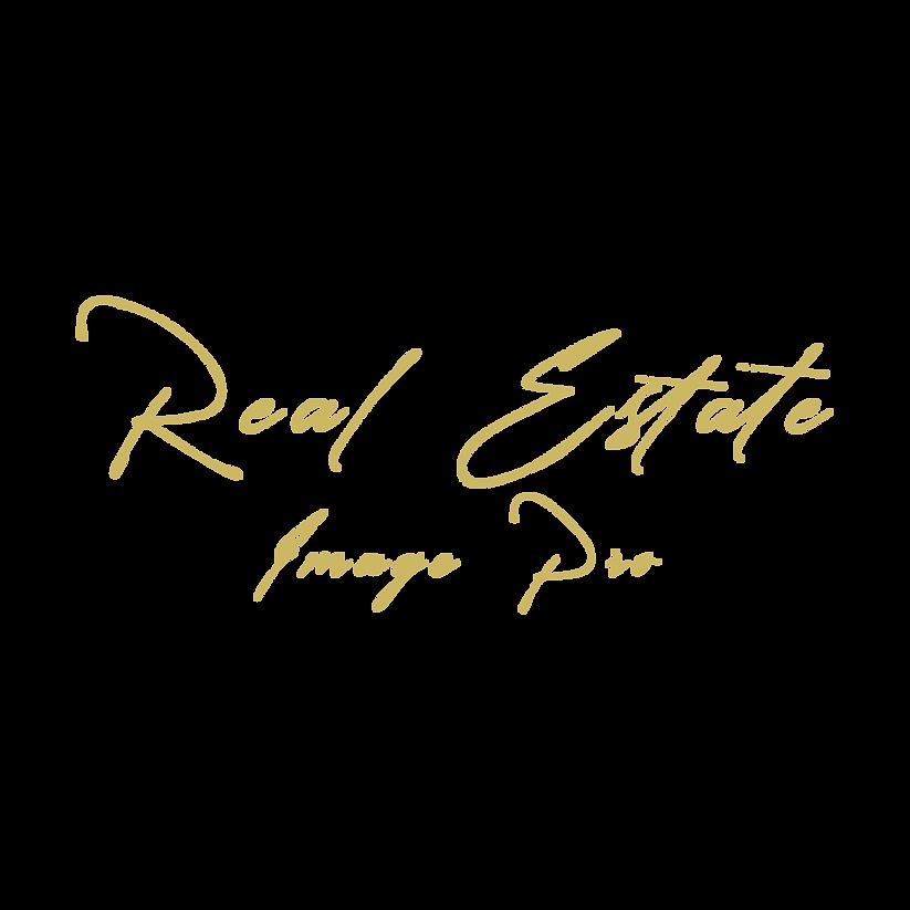 RE Image Pro Logo1.png